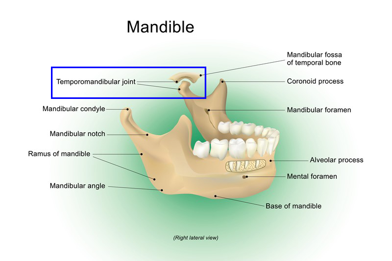 Tmj Relief Physical Therapy For Temporomandibular Joint Disorder