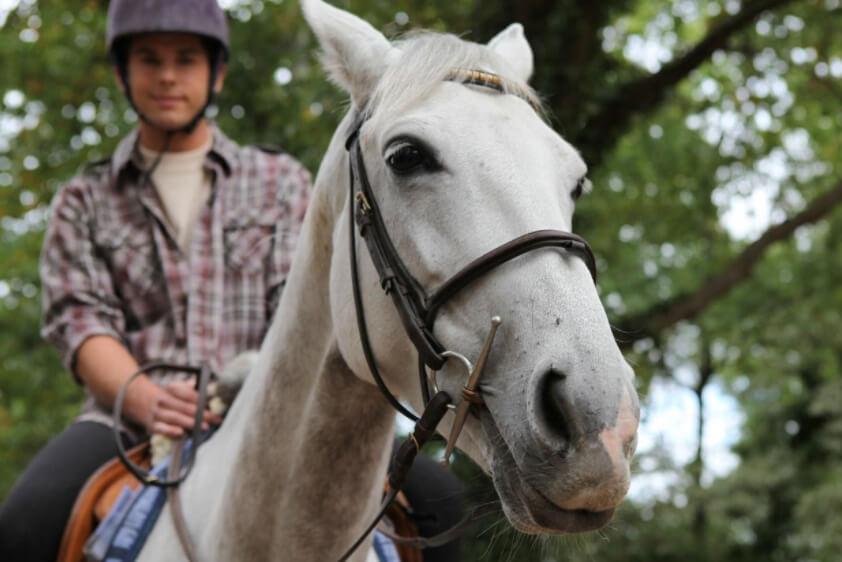 horseback riding safety from pt