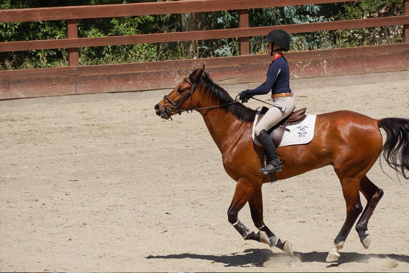 woman horseback riding equestrian